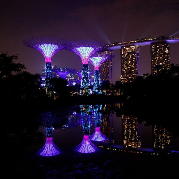 4 Gardens by the bay and marina bay sands hotel