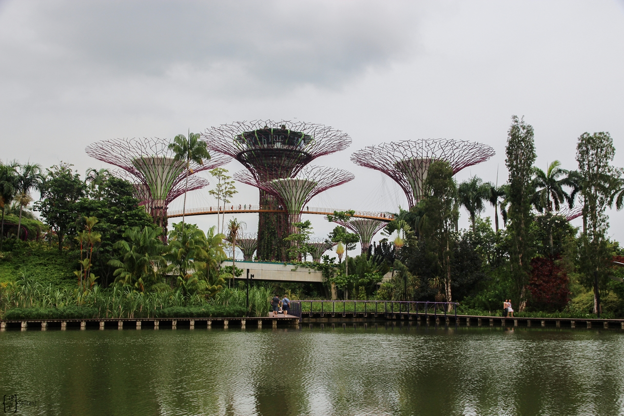 9 Gardens by the bay Singapore