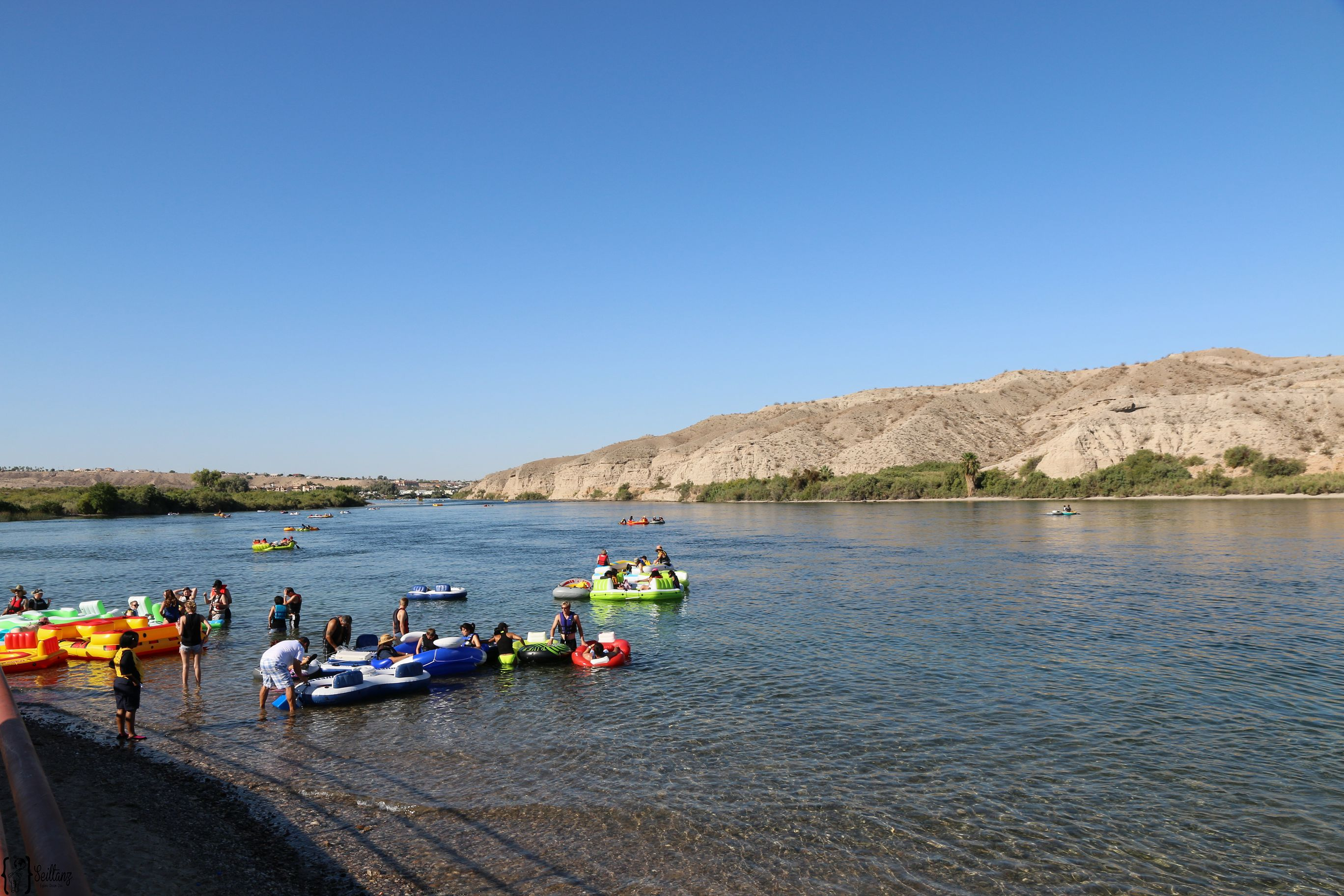 6 River Regatta Bullhead