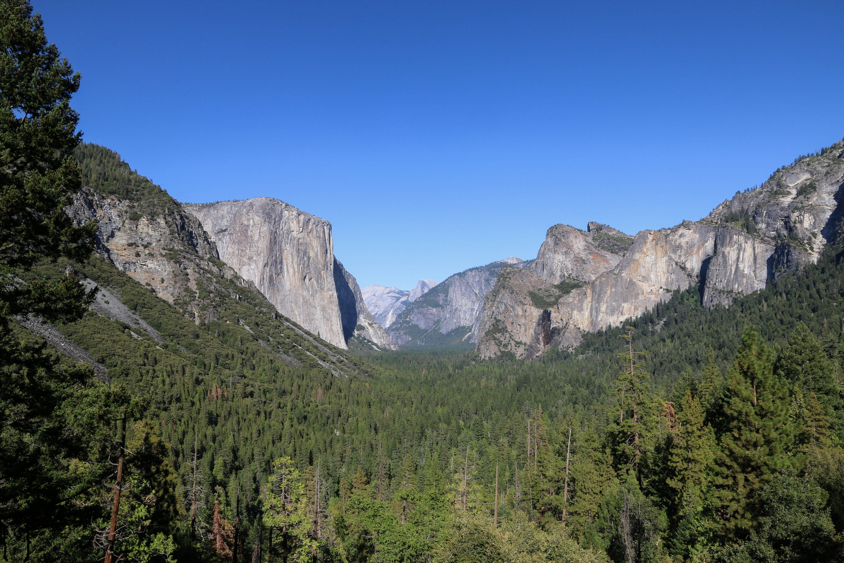 16 Tunnel View