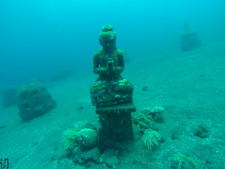 10 Buddha Diving