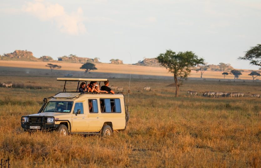 Serengeti Nationalpark – Pirschfahrten in der endlosen Savanne